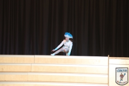 20 Jahre Karneval Fantasia 10.01.2015 20-44-40