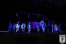 20 Jahre Karneval Fantasia 10.01.2015 21-46-16