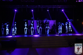 20 Jahre Karneval Fantasia 10.01.2015 21-46-35