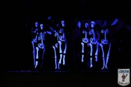 20 Jahre Karneval Fantasia 10.01.2015 21-47-32