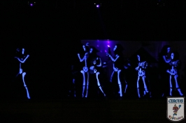 20 Jahre Karneval Fantasia 10.01.2015 21-48-47
