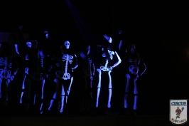 20 Jahre Karneval Fantasia 10.01.2015 21-49-05