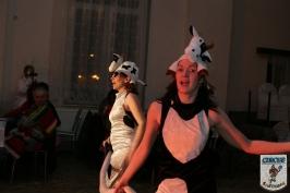 Karnevall 2008 2009 Großbadegast-810