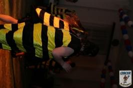 Karnevall 2008 2009 Großbadegast-967