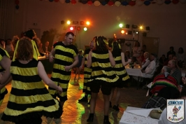 Karnevall 2008 2009 Großbadegast-985